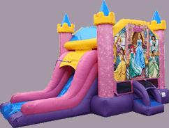Disney Princess Deluxe Combo Slide
